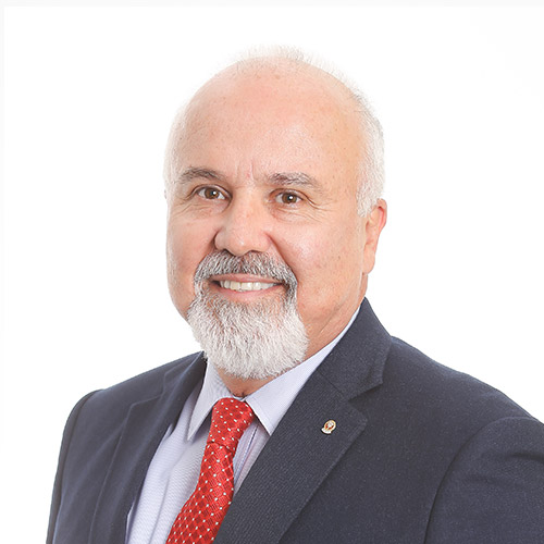 CARLOS ALBERTO CARVALHO DE VILHENA COELHO