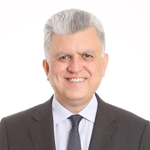 MARIO LUIZ BONSAGLIA